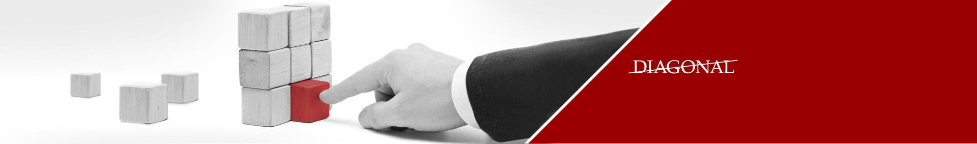 DIAGONAL FÖRLAGS AB - Ett fullserviceföretag inom media, årligen anlitade av ca 40 000 företag